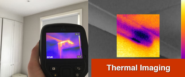 Thermal Imaging Surveys London