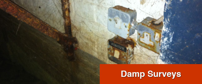 Damp Survey London