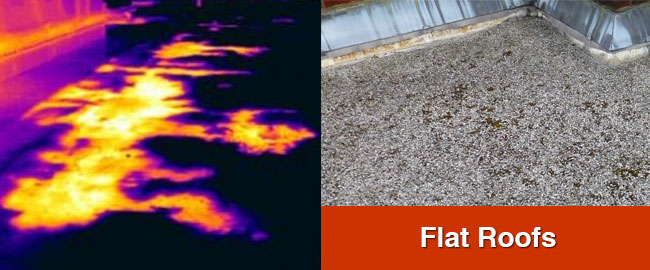 Flat Roof Thermography London