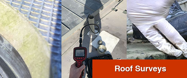 Roof Surveys London