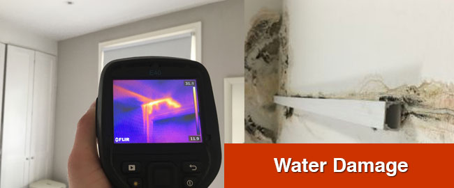 water-damage-specialists-london
