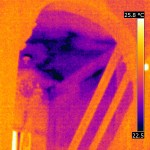Water Damage Thermal Image