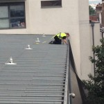 Roof cleaning and general maintenance
