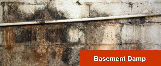 Basement Damp London