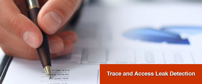 Trace and Access Leak Detection London